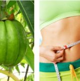 benefits-of-garcinia-cambogia-extract