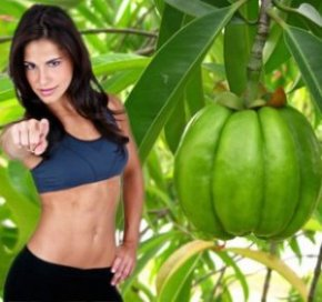 garcinia cambogia free trial offer