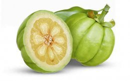 Garcinia Cambogia good fresh fruit