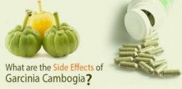 Garcinia Cambogia negative effects