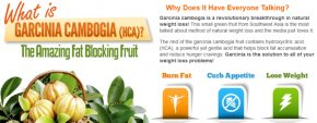 garcinia cambogia test supplements
