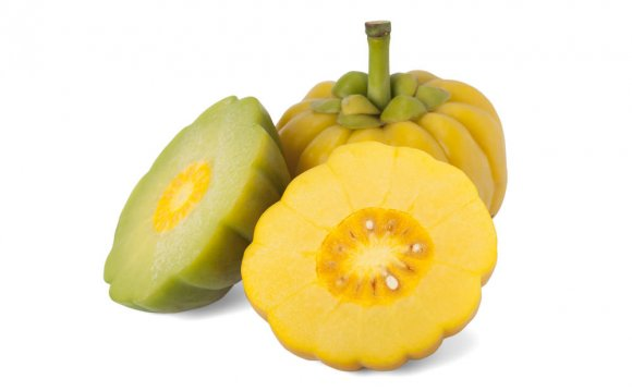 What brand of Garcinia Cambogia Works?