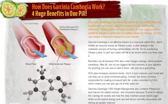 Does Garcinia Cambogia Works