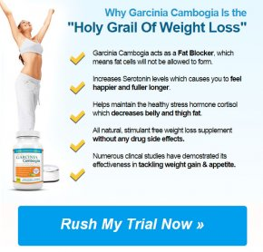 original garcinia cambogia weight loss
