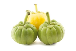in the event you just take Garcinia Cambogia With or Without Potassium?