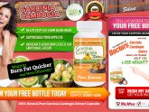Garcinia Cambogia Extract Natural weight loss