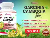 Garcinia Cambogia Slim Reviews