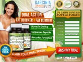 Garcinia Cambogia the Vitamin Shoppe