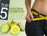 Top Garcinia Cambogia brands