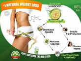 Weight loss fruit Garcinia Cambogia